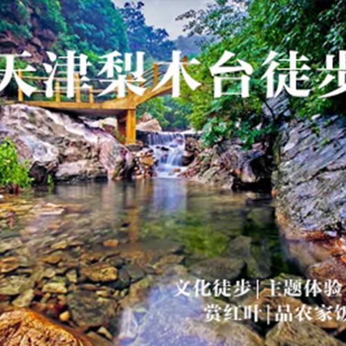 吴江天津梨木台徒步|徒步