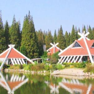 共青森林公园1日团建方案【共绘梦想,青葱岁月】